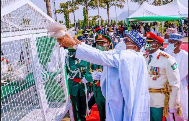 Why pigeons Buhari released refused to fly – Presidency